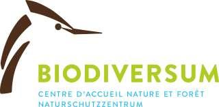 BioDiversum_CI_Logo_finalesLogo_DOLL